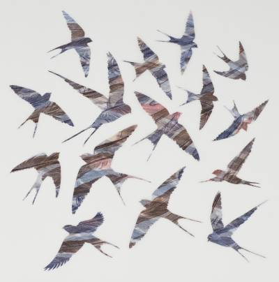 As-Swift-as-Swallows-Fly