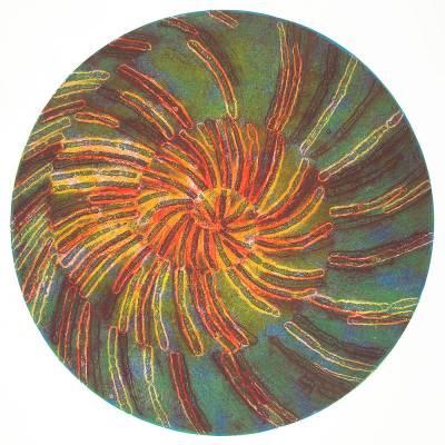 Fan-Worm-Fossil-Form